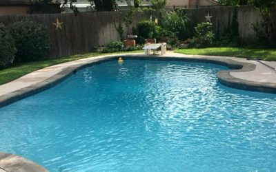 Custom Pool Renovation: New coping, mastic, tile, and plaster